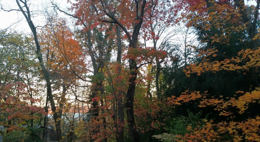 Fall view from Upper Nyack, New York