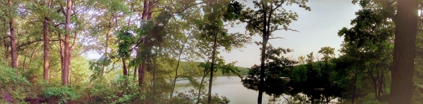 Dream this August at the Lake. Copyright Catherine Goshen 2017.
